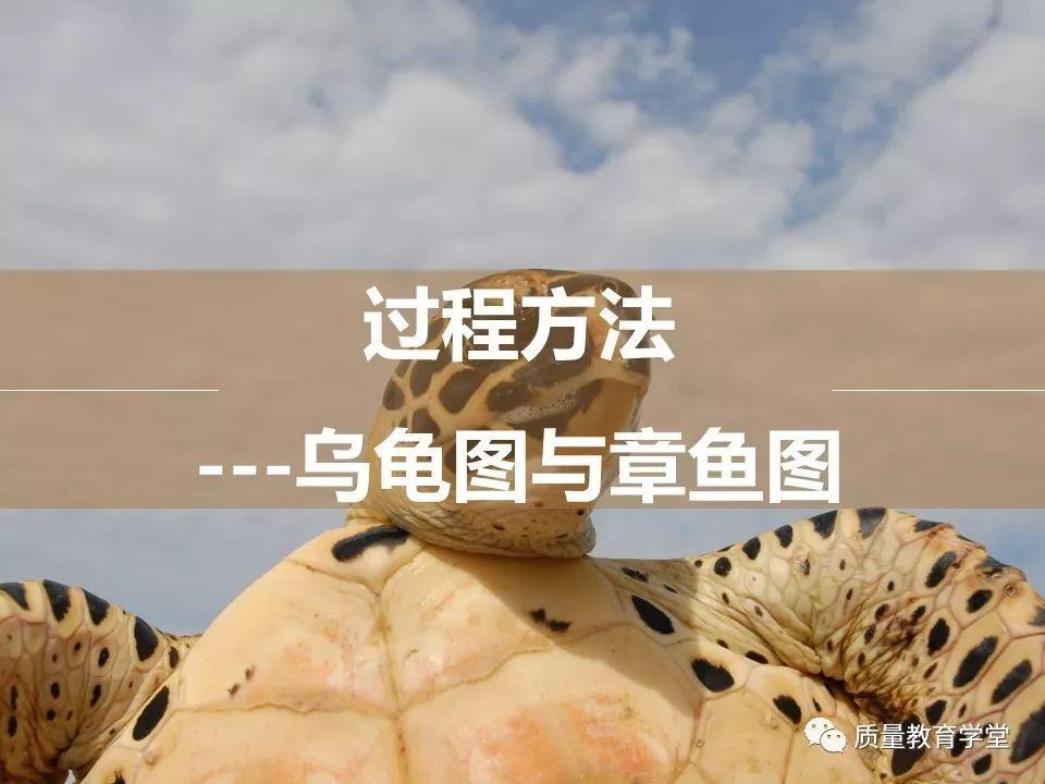 一文看懂IATF16949中的乌龟图和章鱼图
